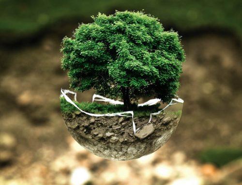 L'eau adoucie permet-elle la réalisation d'économie d'énergie et protège-elle l'environnement ?